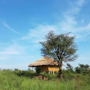 About Topi Lodge