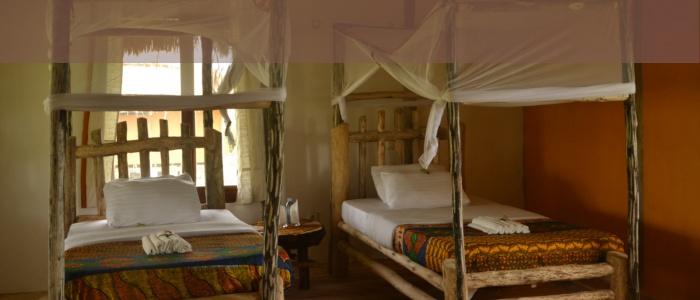 Topi Lodge Ishasha